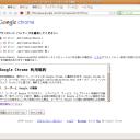 crome_into_ubuntu_01_accept