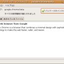 crome_into_ubuntu_04_installer
