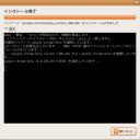 crome_into_ubuntu_05_finish_install